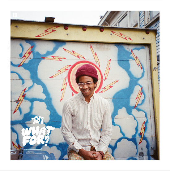 2015-01-21 22_29_45-Toro Y Moi - Empty Nesters by Carpark Records on SoundCloud - Hear the world's s